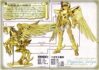 Pegasus Seiya God Cloth ~ Original Color Edition ~ AcoTQKZG