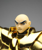 Sagittarius Gold Cloth ~Galaxian War ver.~ AbvabkcG