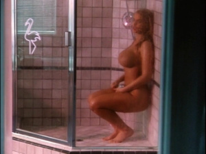 Anna Nicole Smith, Catherine Weber, Coralisa Gine, Kathy Shower @ To The Limit (US 1995)  TkzYHAIp