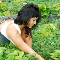 Дениз Милани, фото 4229. Denise Milani Plucking Strawberry., foto 4229