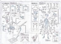 Pegasus Tenma Bronze Cloth Adfh1J3B