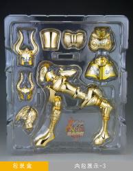 [Luglio 2013] Saint Cloth Myth EX Capricorn Shura - Pagina 9 AdfpK5Bg