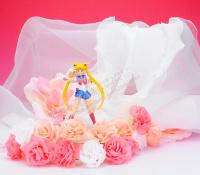 Goodies Sailor Moon - Page 2 AcndQ9o7
