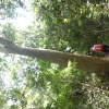Hiking Tsuen Wan - 頁 2 QpKldBmN