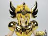 Cygnus Hyoga New Bronze Cloth ~ Power of Gold AbipRQbZ