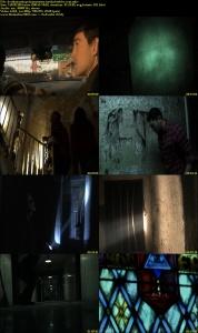 The Asylum Tapes (2012) DVDRip 300mb